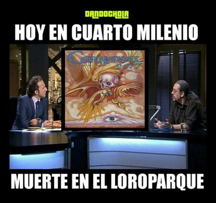 memes-cartel-carnaval-santa-cruz-2_g